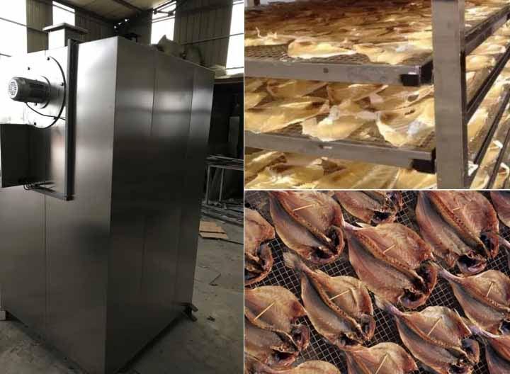 Philippines fish drying machine